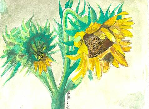 Sunflower by Ayman Youssif