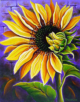 Sunflower by Barbara Rockhold