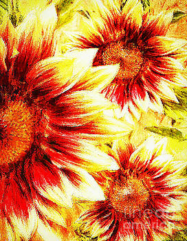 Sunflower Burst by Tina LeCour