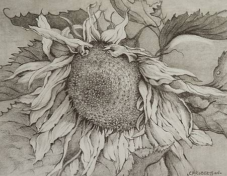 Sunflower  by Catherine Robertson