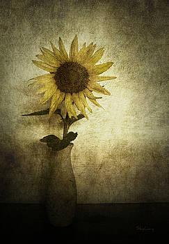 Sunflower by Cynthia Lassiter