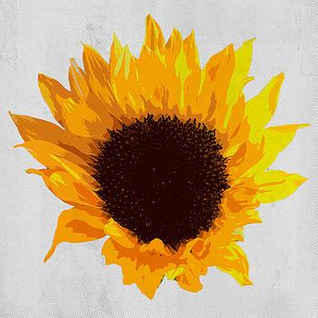 David Pringle - Sunflower