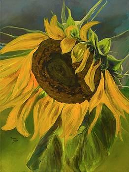 Sunflower by Donna Drake