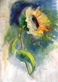 Sunflower by Hedwig Pen