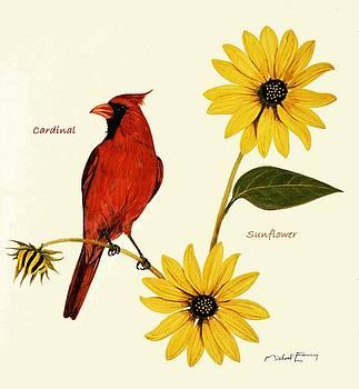 Sunflower - Helianthus asteraceae by Michael Earney