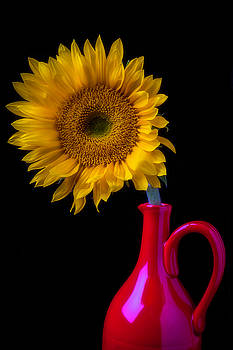 Sunflower In Red Pitcher by Garry Gay
