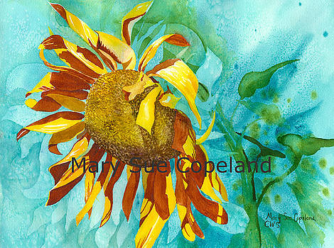 Sunflower in the Wind by Mary Sue Copeland
