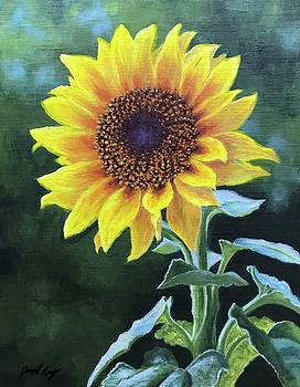 Sunflower by Janet King