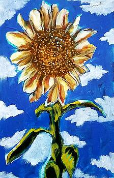Sunflower by Kimberly Dawn Clayton
