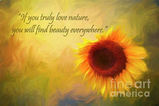 Sunflower Love by Darren Fisher