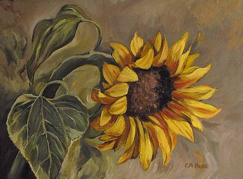 Sunflower Nod by Cheryl Pass