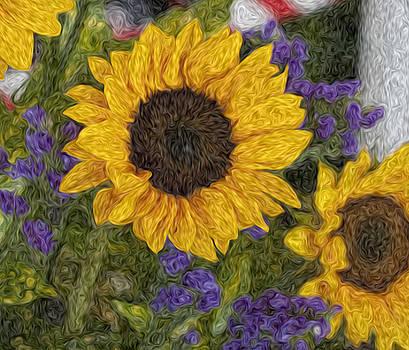 Kevin  Sherf - Sunflower Oil