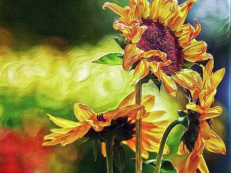 Sunflower Season by Doctor MEHTA