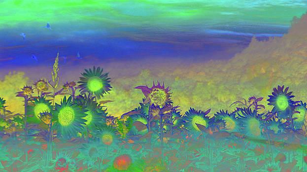 Mike Breau - Sunflower Serenade