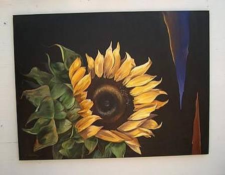 Sunflower by Stan  Sternbach