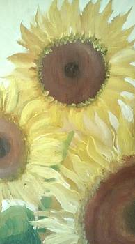 Sunflower  study by Lee Green
