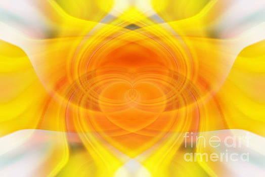 Sunflower Sunshine by Andrea Kollo