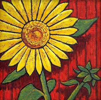 Sunflower by Trace Meek