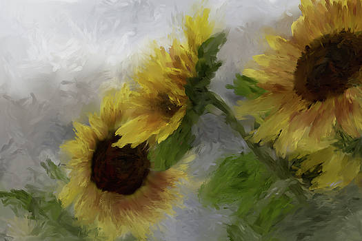 Sunflower Trio Abstract by Karen Forsyth