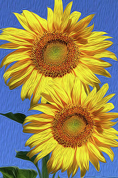 Sunflowers and Blue Skies by Vanessa Thomas