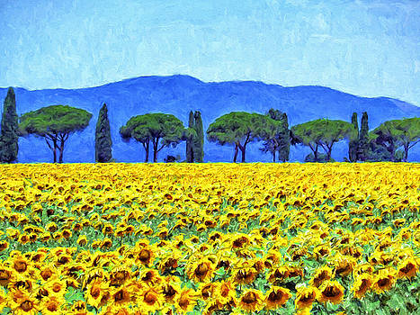Dominic Piperata - Sunflowers and Tuscany Cedars