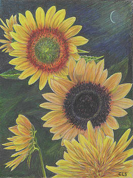 Sunflowers at Night by C L Swanner