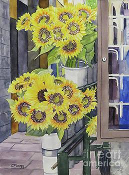 Sunflowers Cortona by Carol Flagg