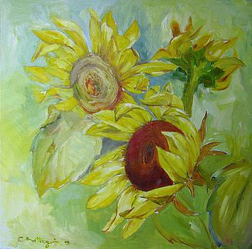 Sunflowers by Cristina Rettegi