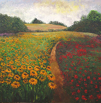 Sunflowers farm by Atousa Foroohary