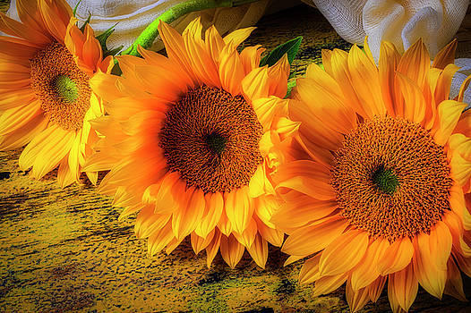 Sunflowers Fresh From The Garden by Garry Gay
