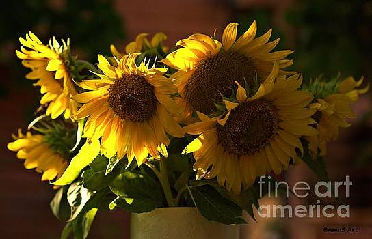 Sunflowers in a vase by AmaS Art