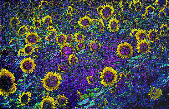 Sunflowers in Alabama by Alan Mogensen