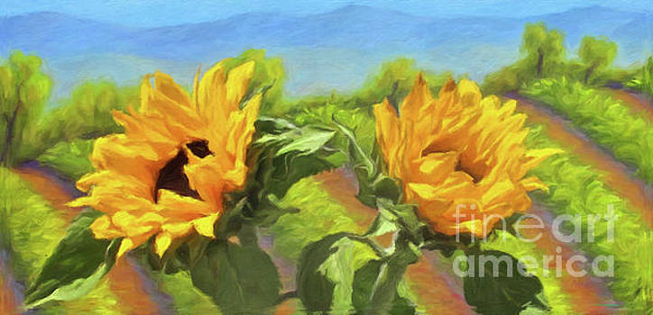 Sunflowers In The Vineyard by Jerome Stumphauzer