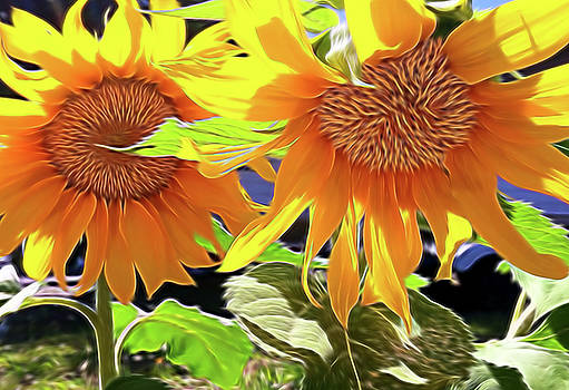Sunflowers by Jennifer Bernardo