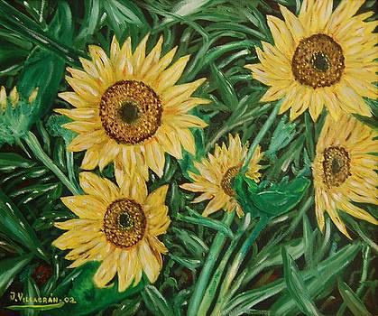 Sunflowers by Jose Luis Villagran Ortiz