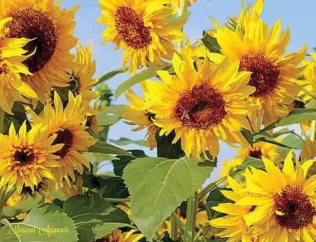 Sunflowers by Mariecor Agravante