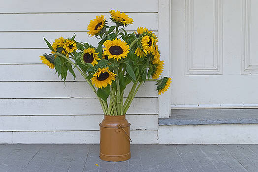 Sunflowers on Porch by Andrew Kazmierski