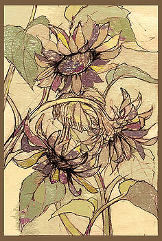 Peggy Wilson - Sunflowers