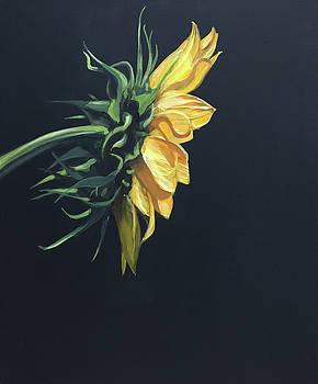 Sunfower 2 by Jeffrey Bess