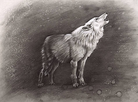 Sunkmanitu Tanka / the Wolf by Dave Kobrenski