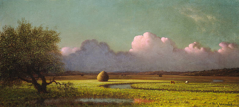 Martin Johnson Heade - Sunlight And Shadow