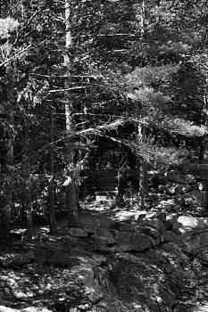 Sandra Huston - Sunlight and Shadows