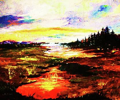 Sunlight in the Marshland by Al Brown