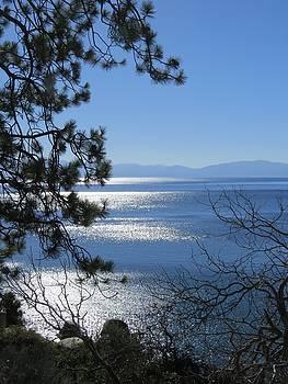 Sunlight on Lake Tahoe by Phil Bearce