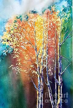 Sunlit Aspens by Donna Martin