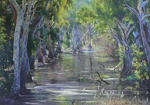 Sunlit Billabong Brick Kiln Creek Deniliquin by Louise Green