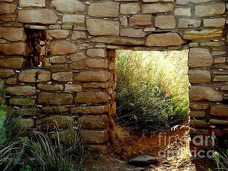Sunlit door and lizard by Annie Gibbons