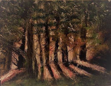 Sunlit Forest by Stephen King