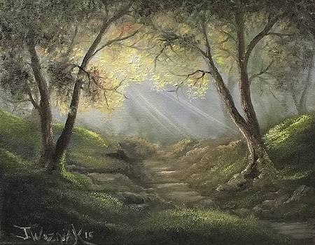 Sunlit Forrest  by Justin Wozniak