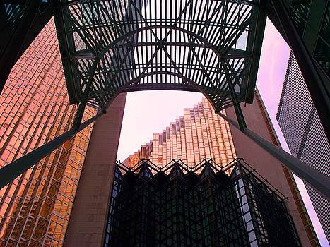 Sunlit Glass With Black Canopy by Sharon Wright